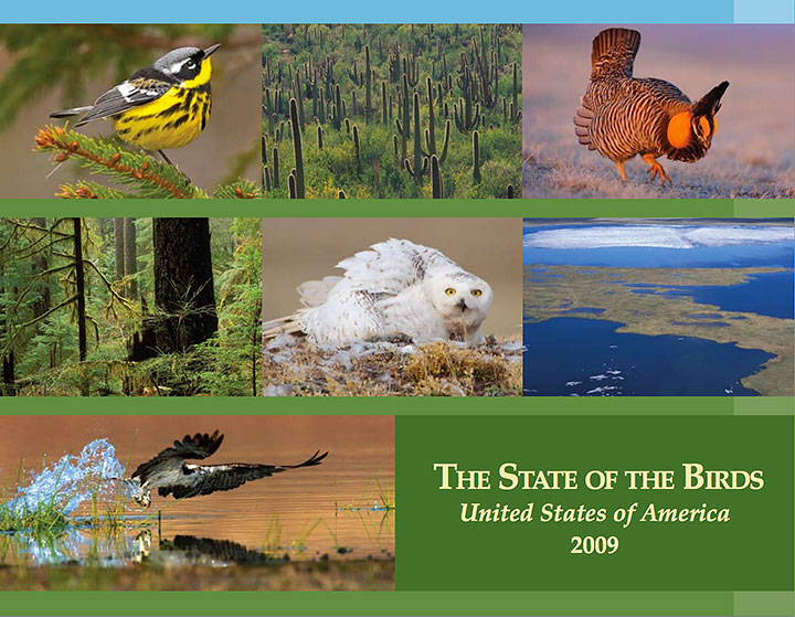 Sate of the Birds Report 2009